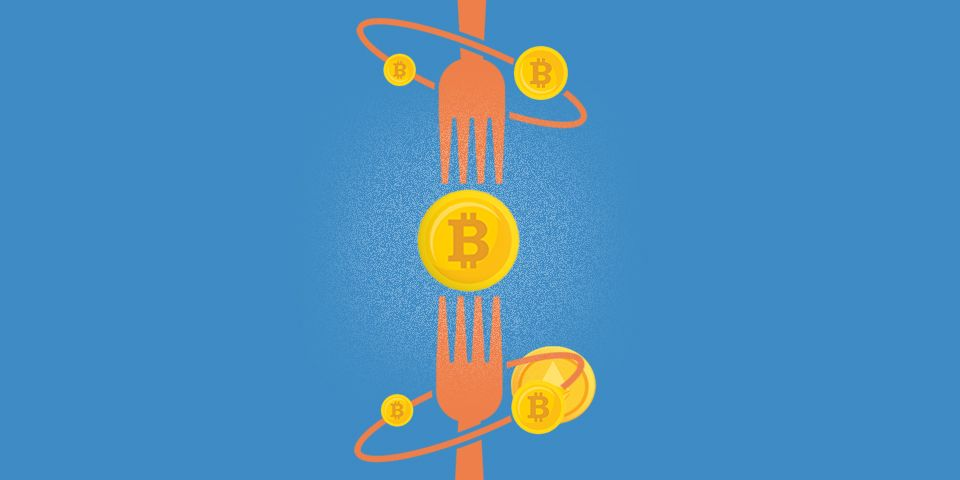 Learn about Blockchain Forks and how they create new cryptocurrencies