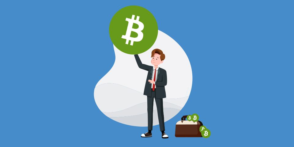 What is Bitcoin Cash? (BCH) - A bitFlyer Academy Guide for Beginners